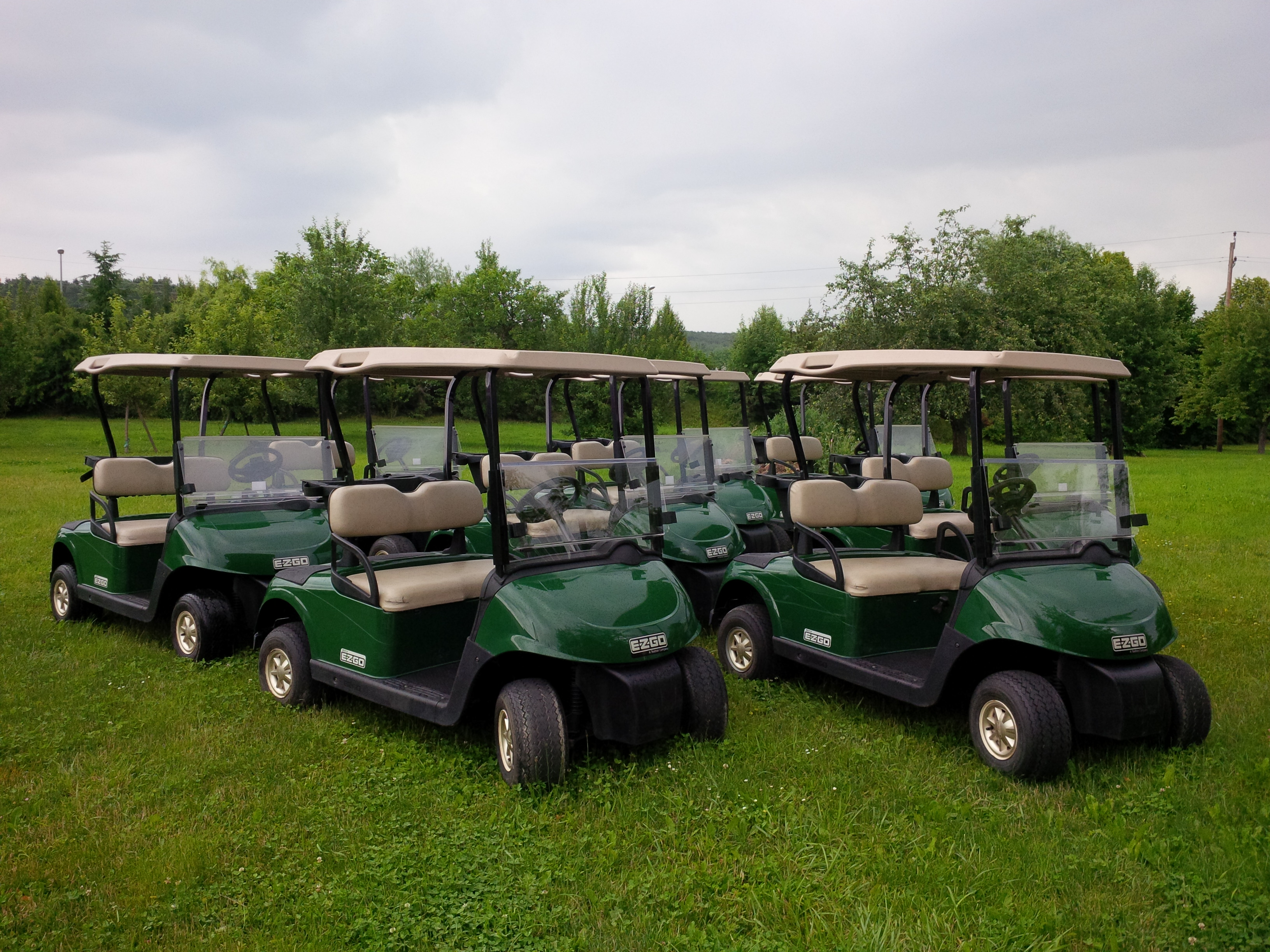 startseite maier 39 s golfcarts maier 39 s golfcarts. Black Bedroom Furniture Sets. Home Design Ideas