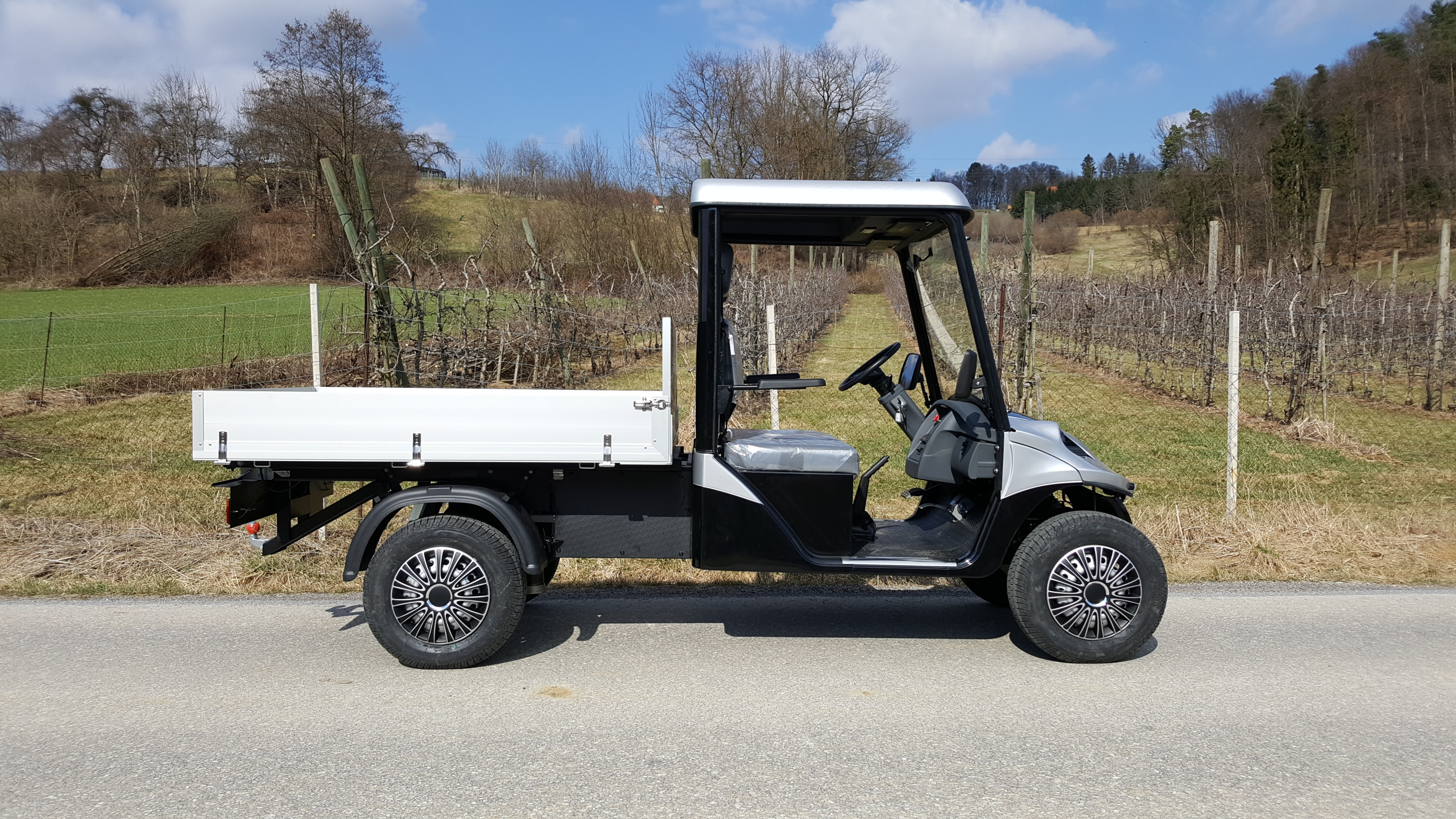 elektrofahrzeug mit strassenzulassung maier 39 s golfcarts. Black Bedroom Furniture Sets. Home Design Ideas